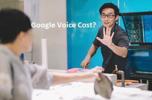 Google Voice cost